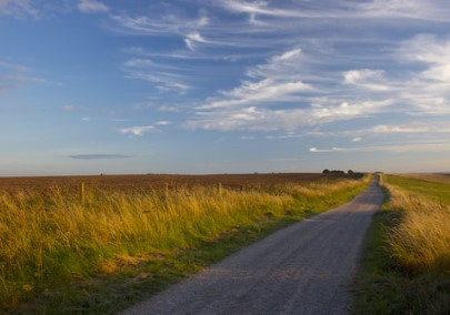 The Ridgeway West Berkshire