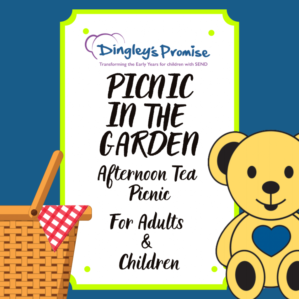 Afternoon Tea Picnic For Adults & Children