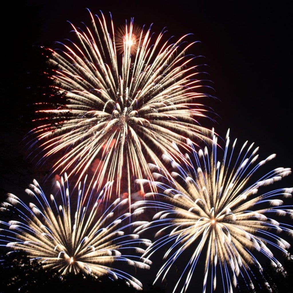 Newbury Lions Charity Firework Spectacular